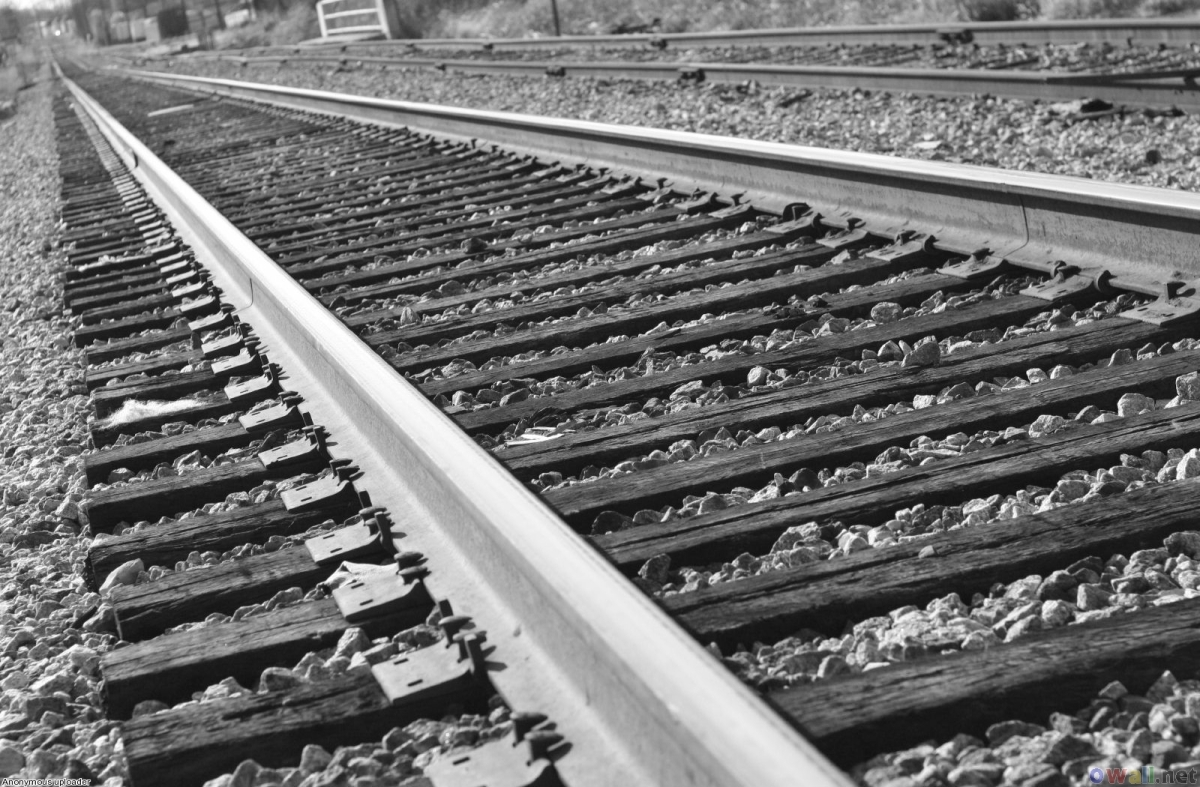 Demiryolları Özelleştirmesi