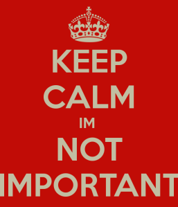 keep-calm-im-not-important